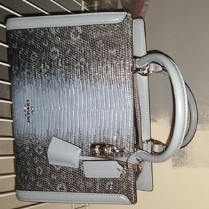 Coach clutch purse with  optional strap